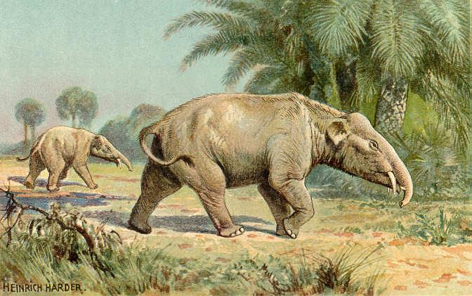 Paleomastodon (Heinrich Harder)
