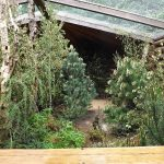 Begehbare Voliere für europäische Vögel (Zoo Plzen)