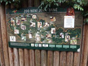 Zoos in Tschechien (gesehen im Zoo Brno)