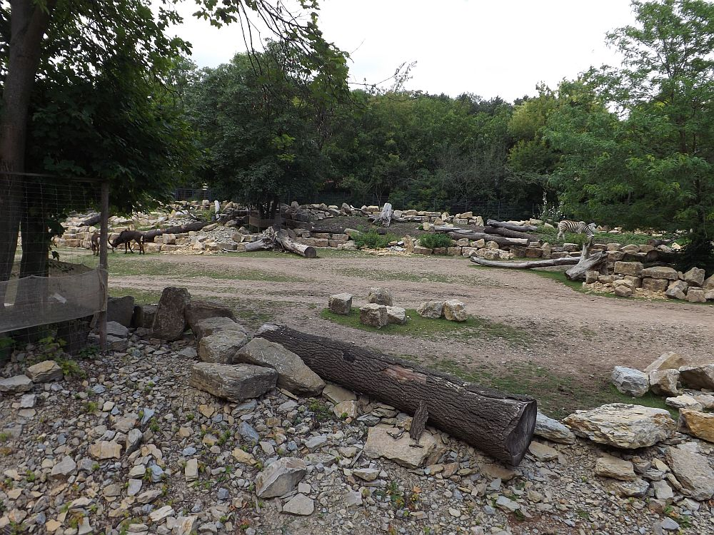Afrikaanlage (Thüringer Zoopark)