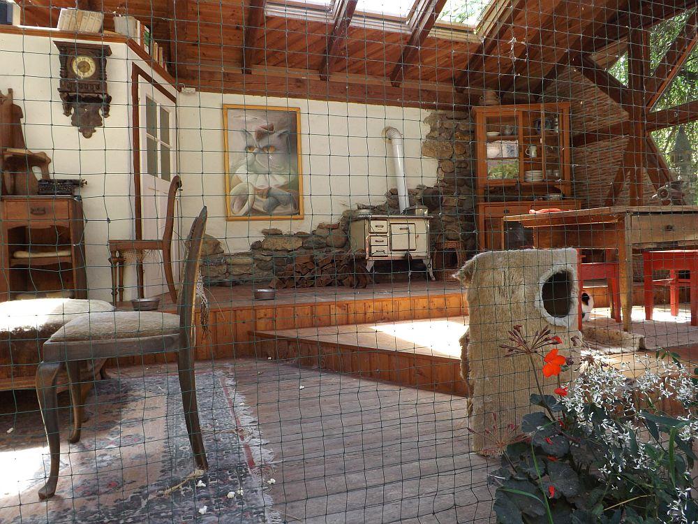 Hauskatzengehege (Bodensee-Zoo)