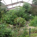 Subtropicum (Zoo Schmiding)