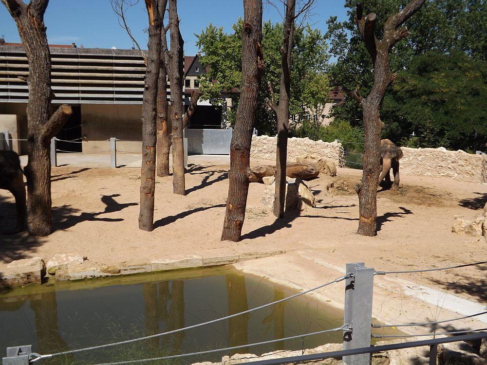 Elefantenanlage (Wilhelma Stuttgart)