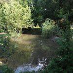 Anlage für Weißnackenkraniche und Heilige Ibisse (Vogelpark Olching)