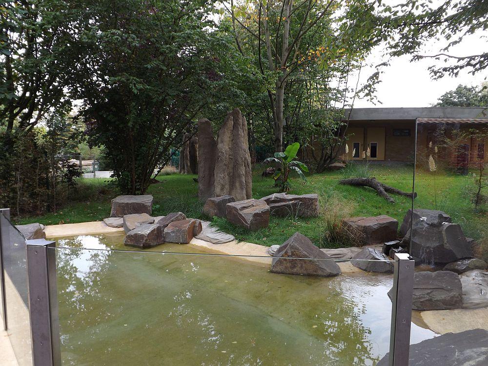 Ameisenbärgehege (Zoo Köln)