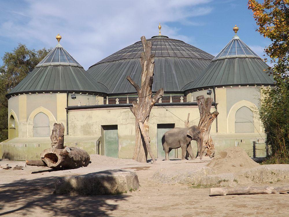 Elefantenhaus (Tierpark Hellabrunn)