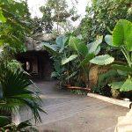 ELE-Tropenparadies (ZOOM Erlebniswelt)