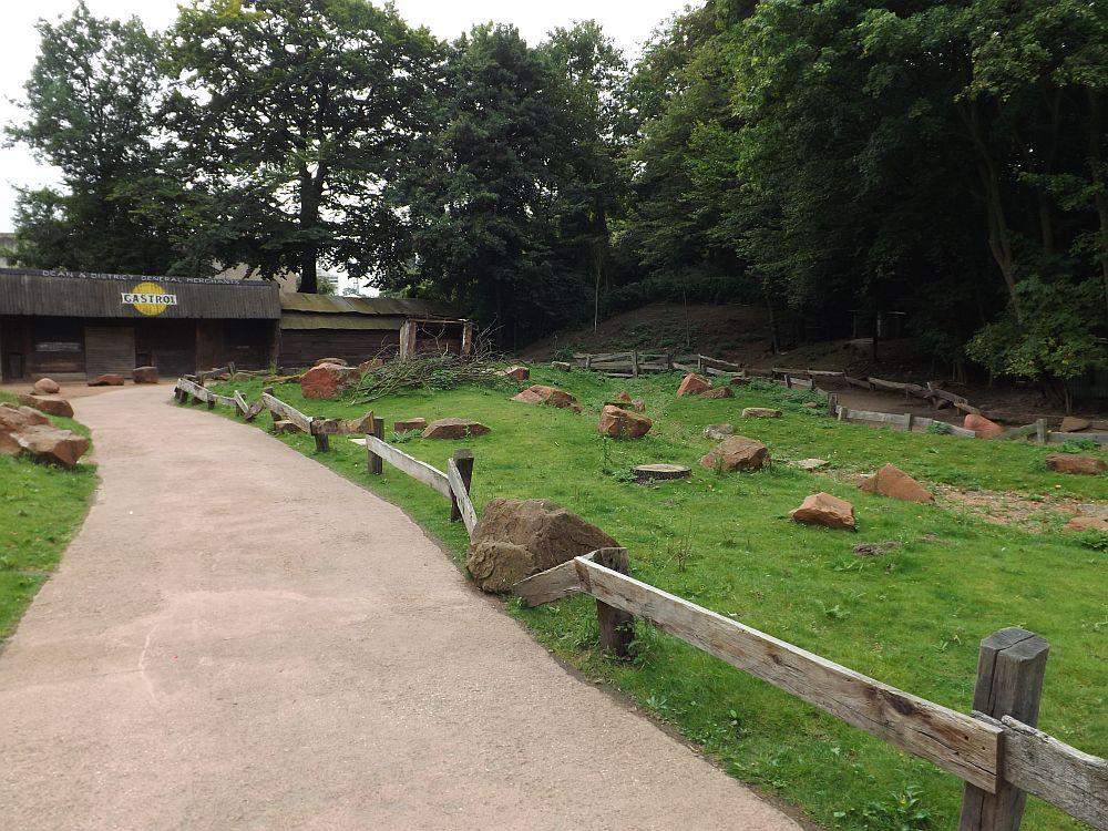 Kängurugehege (Erlebniszoo Hannover)