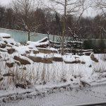 Gorillaanlage (Tierpark Hellabrunn)