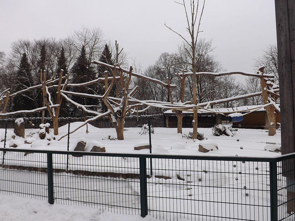 Anlage der Mantelpaviane und Rotbüffel (Zoo Augsburg)