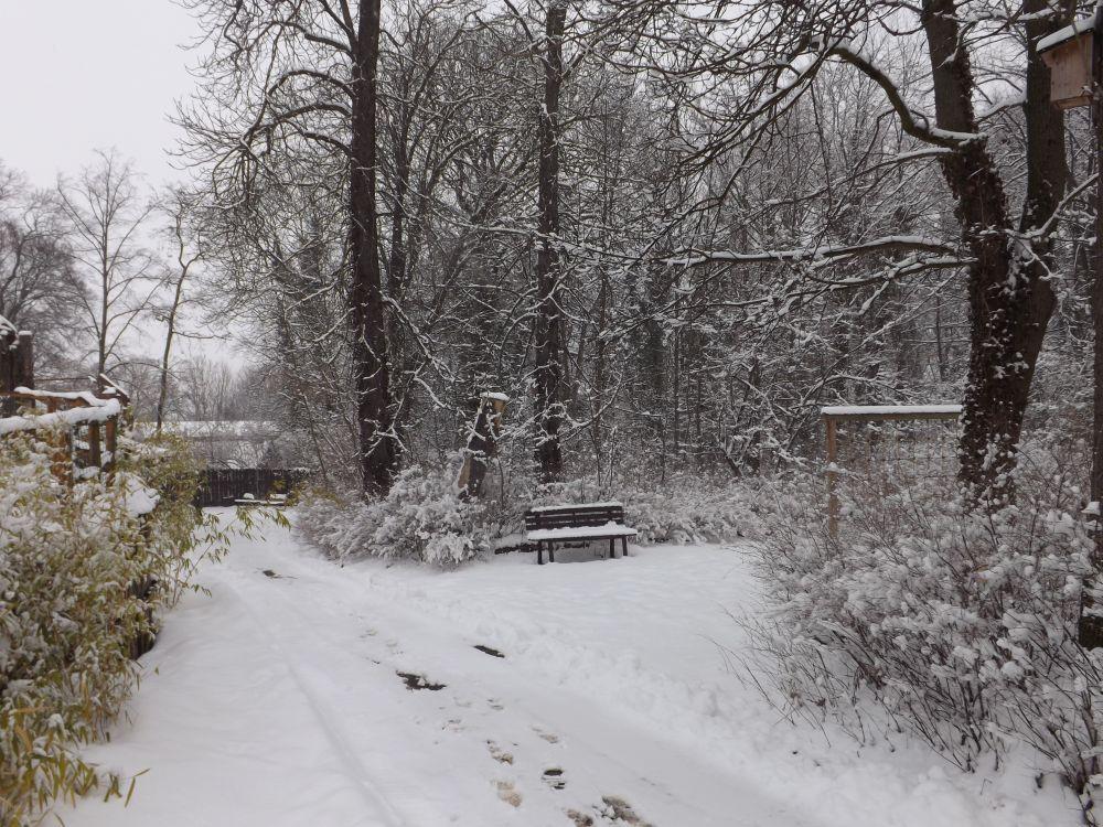 Winterliche Impressionen im Zoo Aschersleben