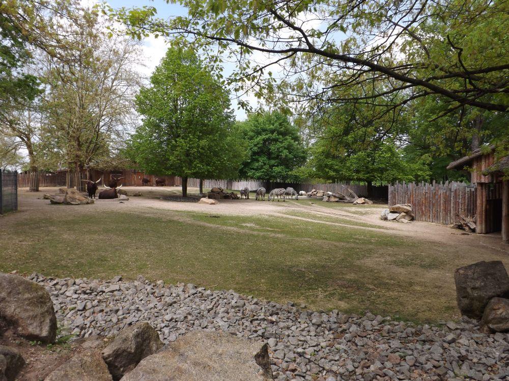 Afrikaanlage (Tiergarten Straubing)