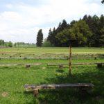 Greifvogelschau (Wildpark Poing)