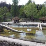 Nutriaanlage (Wildpark Poing)