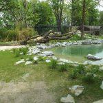 Tigeranlage (Tiergarten Straubing)