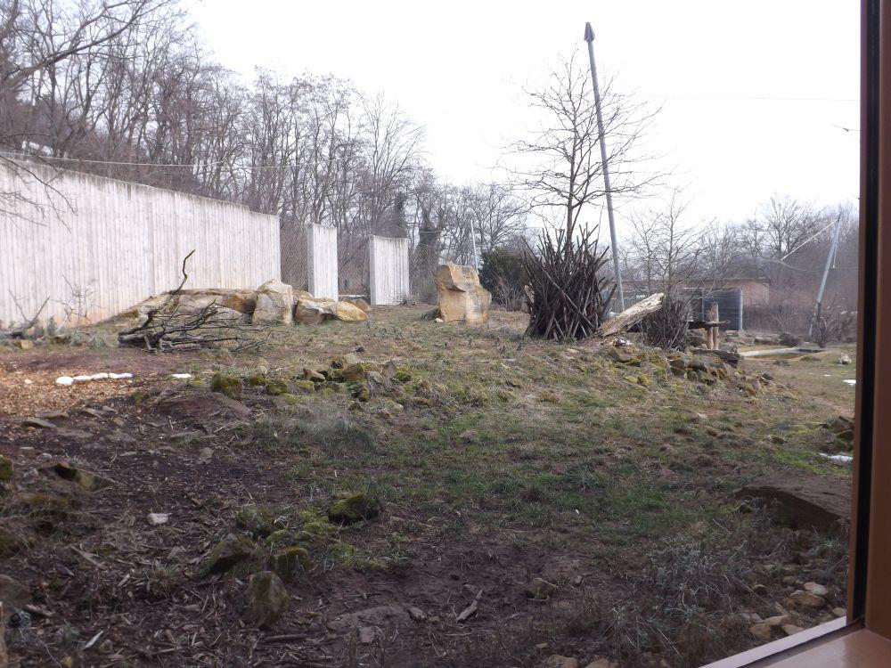 Außenanlage der Löwen (Thüringer Zoopark)