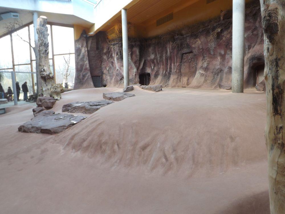 Innenanlage der Löwen (Thüringer Zoopark)