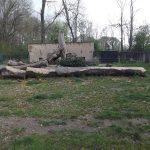 Braunbärenanlage (Tiergarten Delitsch)