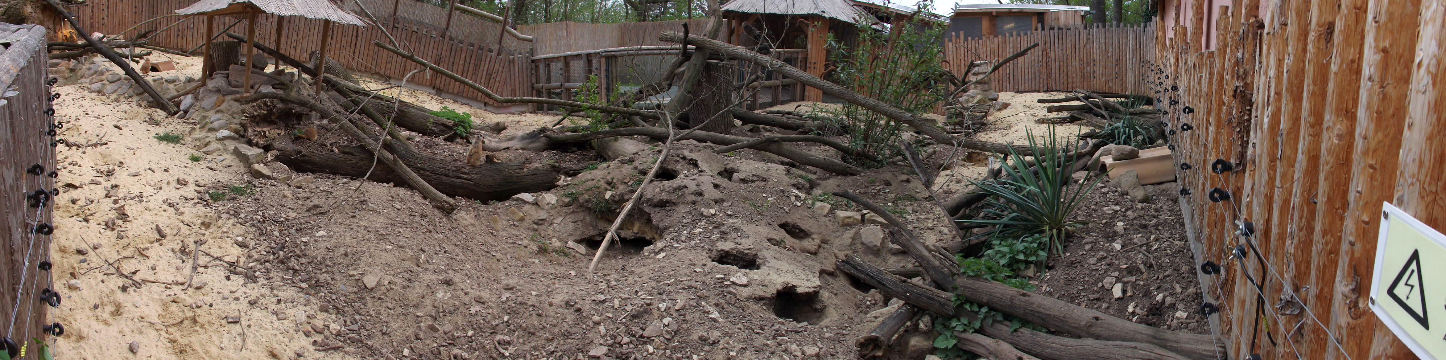 Erdmännchenanlage (Zoo Aschersleben)