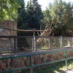 Frettchenanlage (Tierpark Wismar)
