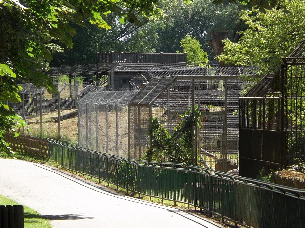 Luchsanlage (Tierpark Wismar)