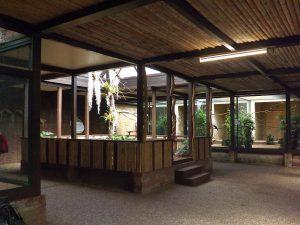 Pukana (Weltvogelpark Walsrode)