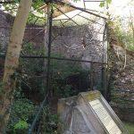 Turmruine für Uhus (Zoo Aschersleben)