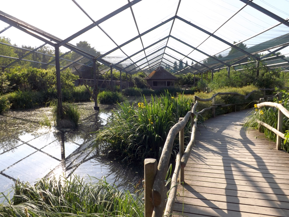 Boddenseevoliere (Vogelpark Marlow)