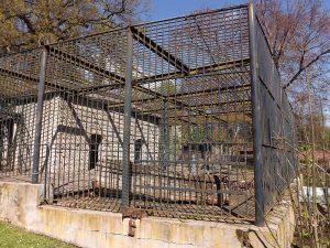 Ehemaliges Braunbärengehege (Tiergarten Eisenberg)