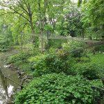 Kranichvoliere (Tierpark Röhrensee, Bayreuth)