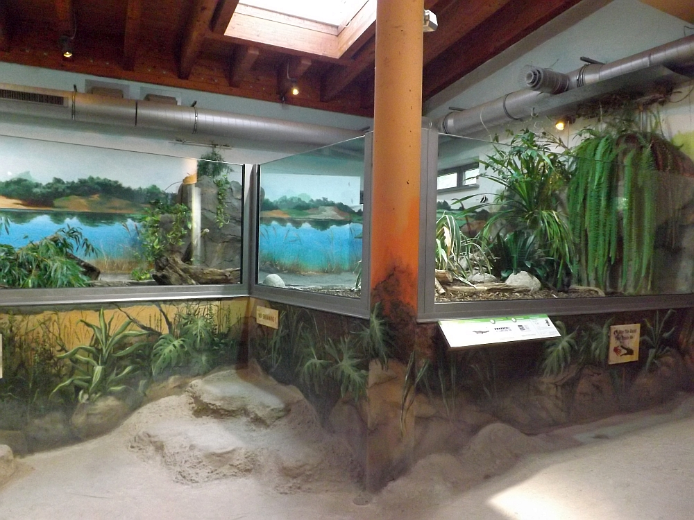 Krokodilhalle (Zoo Rostock)