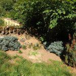Landschildkrötenanlage (Freiland-Aquarium und -Terrarium Stein)