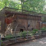 Paviananlage (Tierpark Finsterwalde)