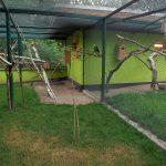 Südamerikaanlage (Tierpark Köthen)