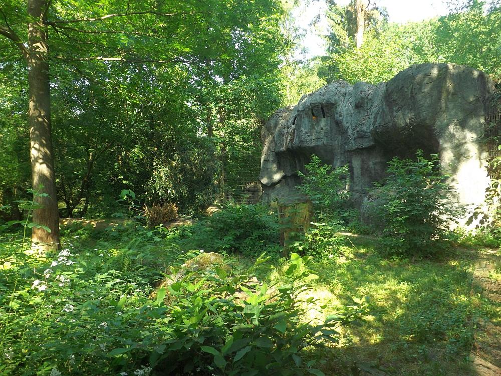 Schneeleopardenanlage (Zoo Rostock)