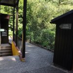 Freiland-Aquarium und -Terrarium Stein