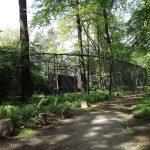 Waldstorchanlage (Tierpark Cottbus)