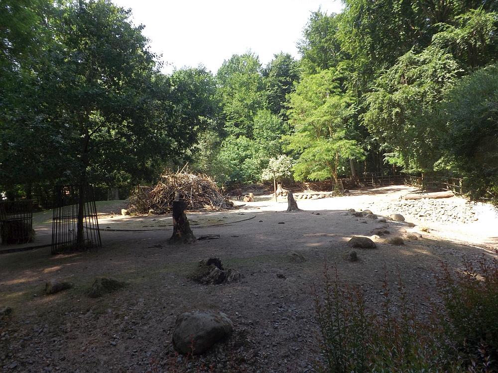 Wisentanlage (Zoo Rostock)