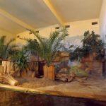 Innenanlage der Zwergflusspferde (Zoo Rostock)