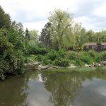 Anlage für Kraniche (Zoo Schmiding)