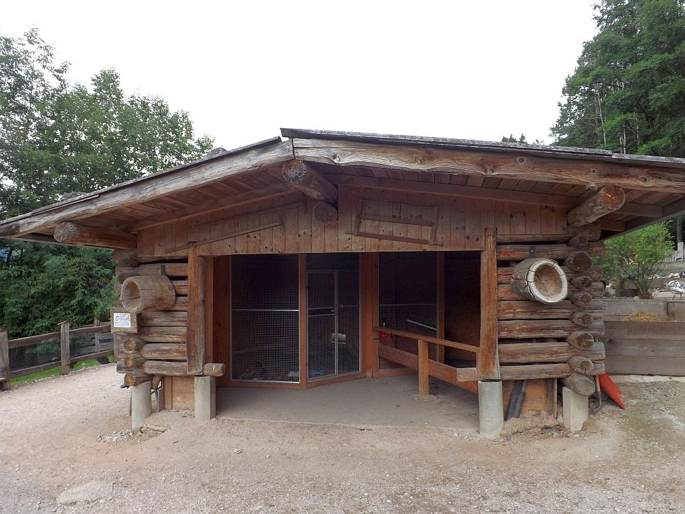 Hühnerkindergarten (Raritätenzoo Ebbs)