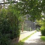 Waldrappvoliere (Zoo Schmiding)