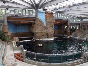 Delfinarium (Zoo Duisburg)