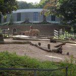 Elefantenanlage (Zoo Wuppertal)