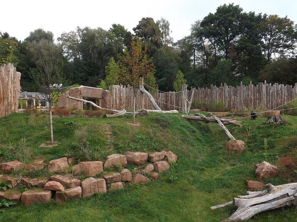 Außenanlage für Gorillas (Zoo Saarbrücken)