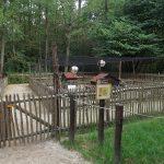 Hühnerdorf (Zoo Kaiserslautern)