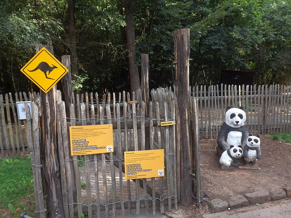 Känguruanlage (Zoo Kaiserslautern)