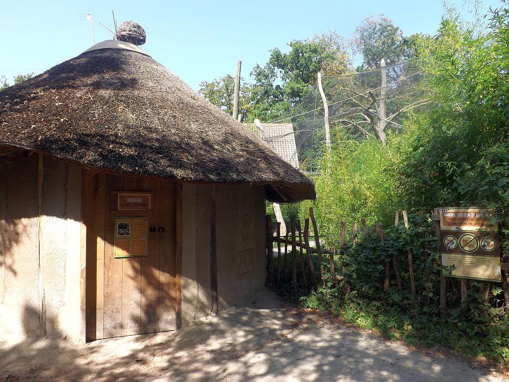 Kattanlage (Zoo Planckendael)