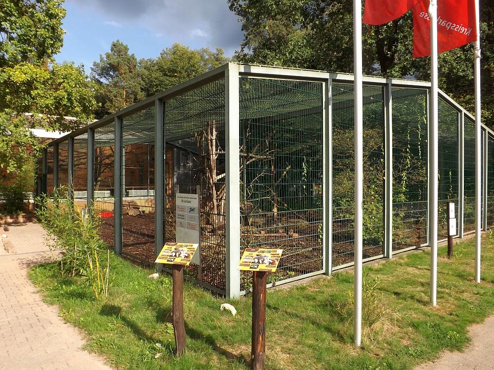 Nasenbärenanlage (Zoo Kaiserslautern)