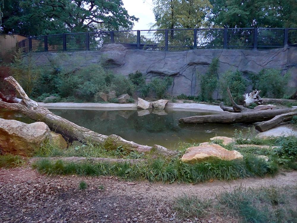 Tigeranlage (Allwetterzoo Münster)